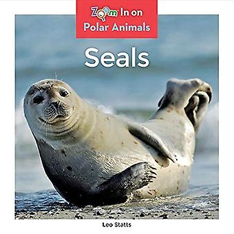 Seals (Polar Animals)