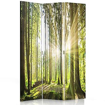 Room Divider, 3 Panels, Double-Sided, 360 ° Rotatable, Canvas, Sun In The Forest