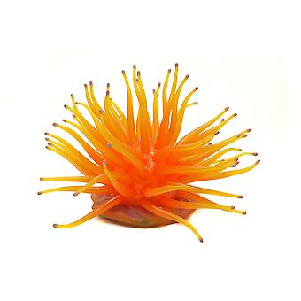 Ornament Anemone Light Orange Large
