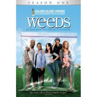 Weeds - Weeds : Saison 1 USA [DVD] import