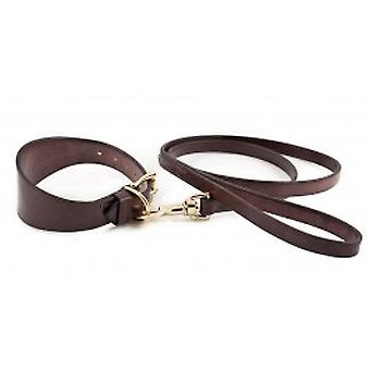Fantaisie anglais Bridle collier en cuir brun