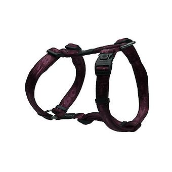 Rogz Alpinist Purple H-Harness
