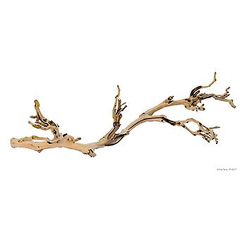 Exo Terra Natural Forest Branch (Reptiles , Decoration , Branches & Tree Trunks)