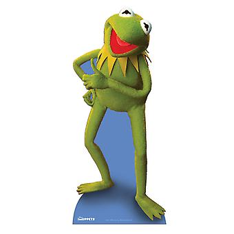 Kermit grodan Lifesize kartong släppandet / stående
