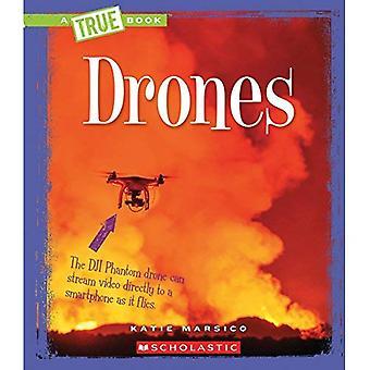 Drohnen (Bookengineering wahre Wunder)
