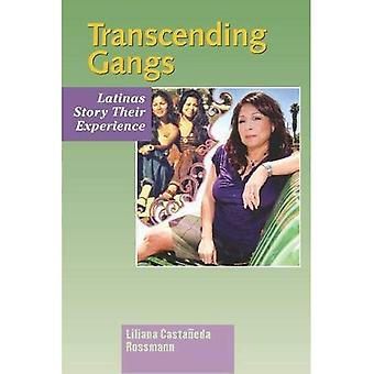 Transcending Gangs: Latinas Story Their Experience (The Hampton Press Communication Series)