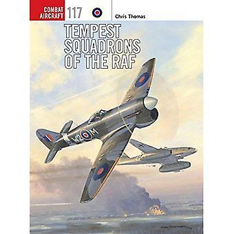 Tempête des escadrons de la Royal Air Force (avions de Combat)
