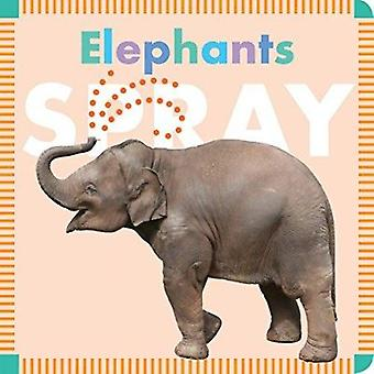 Elephants Spray by Rebecca Glaser - 9781681520681 Book