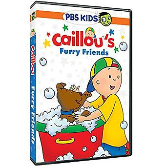 Caillou: Caillous Furry Friends [DVD] USA import