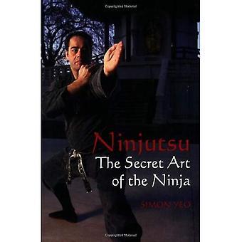 Ninjutsu: A arte secreta dos ninjas