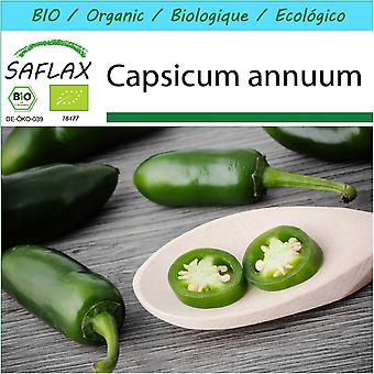 Saflax - Gift Set - 20 seeds - Organic - Hot Chili Pepper – Early Jalapeno - BIO - Piment  - Early jalapeno - BIO - Peperoncino - Early Jalapeno - Ecológico - Chile - Jalapeño Temprano - Chili - Early Jalapeno