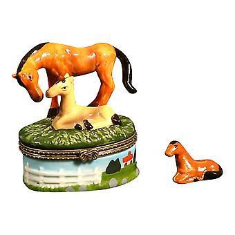 Hest Pony Colt Mare græs elskere nipsting boks phb