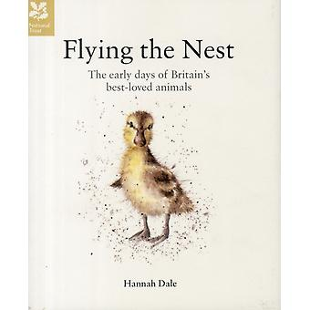 Flying the Nest: The Early Days of Britain's Best-Loved Animals (Hardcover) by Dale Hannah