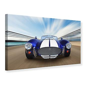 Canvas Print race auto
