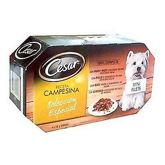 Cesar Wet Food Multipack Special Selection Peasant in Sauce 4x150 gr