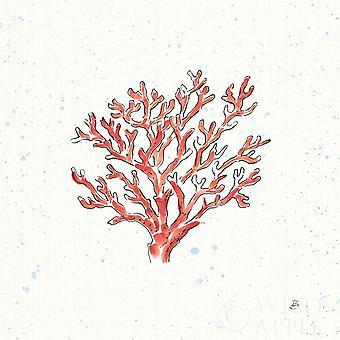 Морские Xiii плакат печать, Дафна Brissonnet