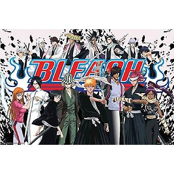 Bleach Anime Cast Poster Poster Print