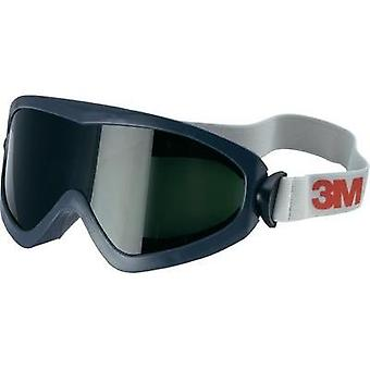 3M 3M 2895S safety glasses 2895s