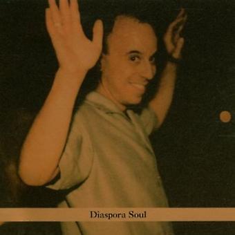 Steven Bernstein - Diaspora Soul [CD] USA import