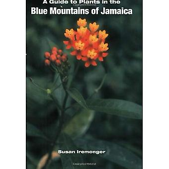 A Guide to the Plants of the Blue Mountains of Jamaica