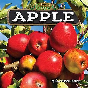 Apple by Dawn Bluemel Oldfield - 9781627248396 Book