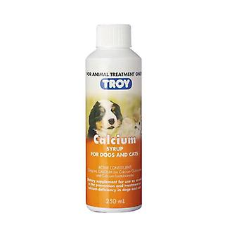 Troy Calcium Syrup 250ml
