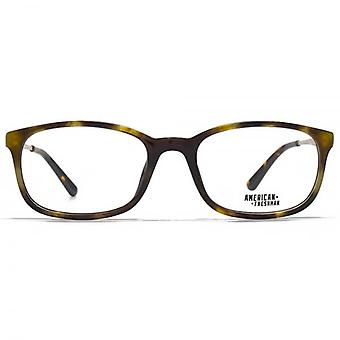 American Freshman Cory Classic Rectangle Glasses In Tortoiseshell