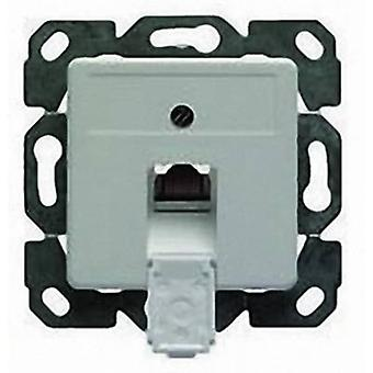 Network outlet Flush mount Insert with main panel CAT 5e 1 port Telegärtner Alpine white