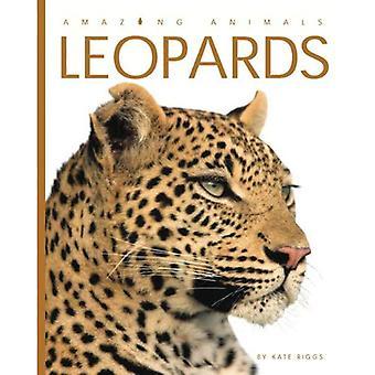 Amazing Animals: Leopards