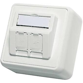 Telegärtner Network outlet Surface-mount Unequipped Alpine white