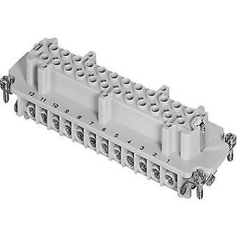 Amphenol C146 10B024 002 1 zócalo Inserte Amphenol C146 10B024 002 1 C146 10B024 002 1 co connectorsIndustrial para trabajo pesado