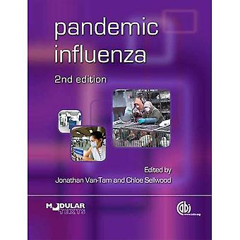 Pandemische Influenza