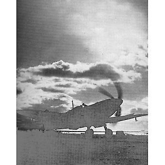 Sea Flight: A Fleet Air Arm Pilot's Story