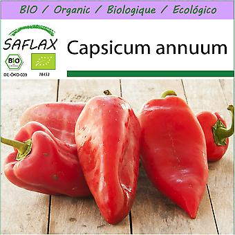 Saflax - 20 seeds - Organic - Sweet Pepper - Long Red Marconi - BIO - Poivron - Red Marconi - BIO - Peperone - Long Red Marconi - Ecológico - Pimiento - Marconi Rojo Largo - Paprika - Long Red Marconi