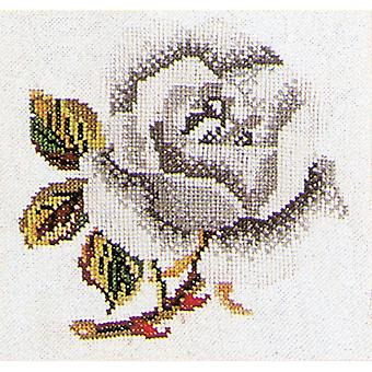 White Rose On Aida Counted Cross Stitch Kit 5 1 8