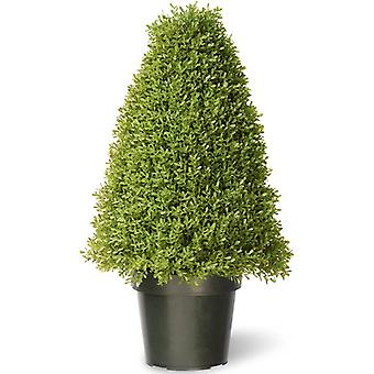 The National Tree 36inch Boxwood Tree with a Dark Green Growers Pot