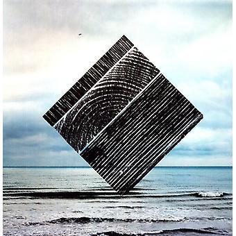 Fink - perfekt mørket [Vinyl] USA importerer