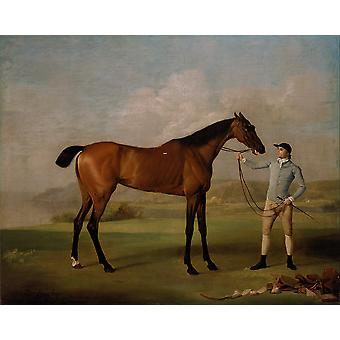 George Stubbs - Molly Long-legs with her Jockey Poster Print Giclee