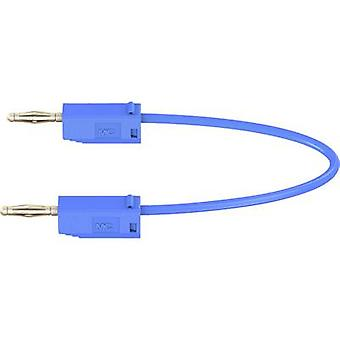 Stäubli LK205 Test lead [Banana jack 2 mm - Banana jack 2 mm] 0.45 m Blue