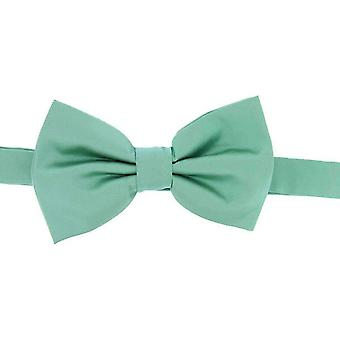 David Van Hagen Plain Satin Silk Bow Tie - Mint Green