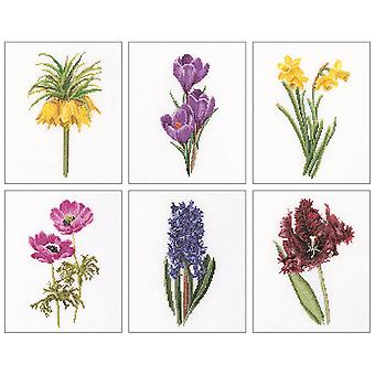 Floral Studies 3 On Aida Counted Cross Stitch Kit-6.75