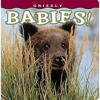 Grizzly Babies! by Henry H Holdsworth - 9781560375463 Book