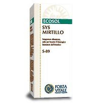 Forza Vitale Sys.mirtillo Nero (Cranberry) 50Ml. (Herbalist's , Natural extracts)