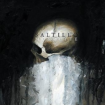 Saltillo - Monocyte [Vinyl] USA import
