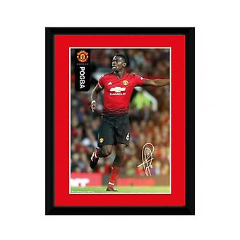 Manchester United Picture Pogba 8 x 6