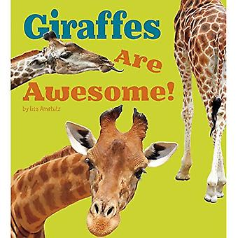 Giraffes Are Awesome! (Awesome African Animals!)
