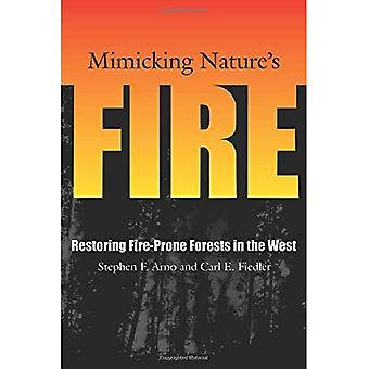 Mimicking Nature's Fire: Restoring Fire-prone Forests in the West
