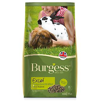 Burgess Excel Junior And Dwarf Rabbit Nuggets With Mint 10kg