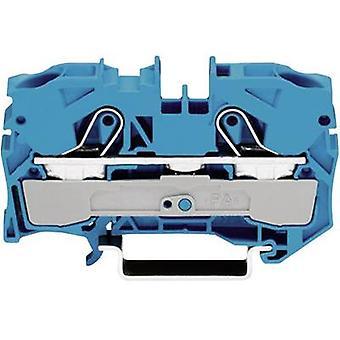 Continuidad 10 mm tire del resorte configuración: N azul