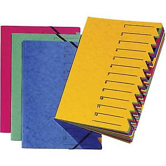 PAGNA Organiser Blue A4 Chipboard No. of compartments: 12 P2413102